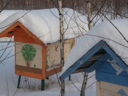 Зимой 2012 года